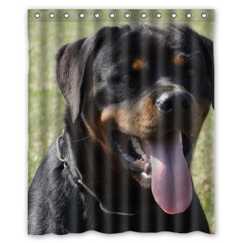 Rottweiler Shower Curtain60 x 72 Inches