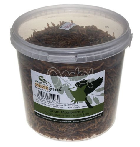 natures-grub-dried-mealworms-400g-misc