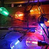 Commercial Led Edison String Lights - 25 Multicolor Globes - Black Wire