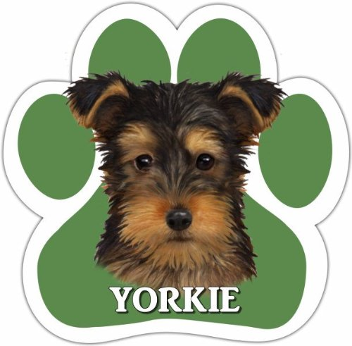 Yorkie Pup Car Magnet With Unique Paw Shaped Design Measures 5.2 By 5.2 Inches Covered In High Quality Uv Gloss For Weather Protection