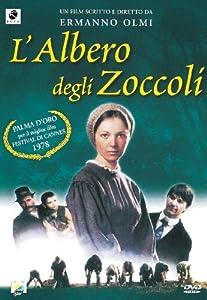 L' Albero Degli Zoccoli
