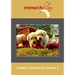 Animal Attractions Season 3 Episodes 1 thru 13
