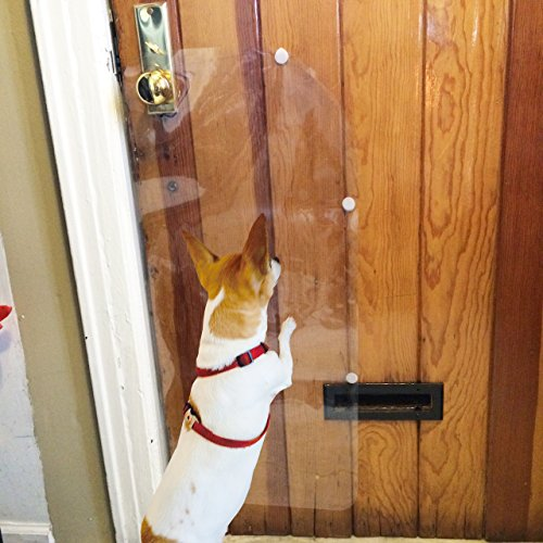 How To Stop A Cat Scratching Door To Get Out
