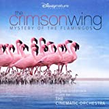 The Crimson Wing: Mystery Of The Flamingosby Cinematic Orchestra