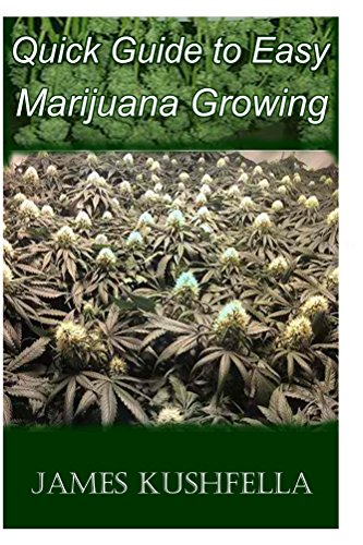 Quick Easy Guide to Marijuana Growing