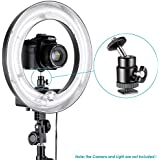 Neewer Mini Ball Head with Lock and Hot Shoe Adapter Camera Cradle