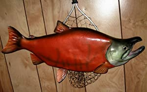 Giant Taxidermy Quality Sockeye Salmon Fish Wall Mount by Land and Sea
