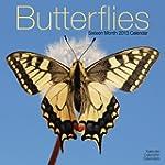 Butterflies  2013 Wall Calendar