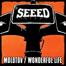 Molotov/Wonderful Life (Colored Vinyl + Download-Gutschein) [Vinyl Maxi-Single]