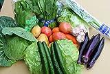 沖縄県産  旬の野菜セット6種(その時の旬のもの6種)