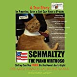 In America, Even a Cat Can Have A Dream: Schmaltzy: The Piano Virtuoso