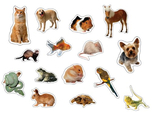 Carson Dellosa Pets: Photographic Shape Stickers (168011) - 1
