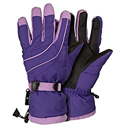 Women\'s Waterproof / Thinsulate Lined Ski Glove (Violet, Large)
