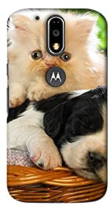 Impact Designs Printed Back Cover for Motorola Moto G4 Plus (Multi-Color)