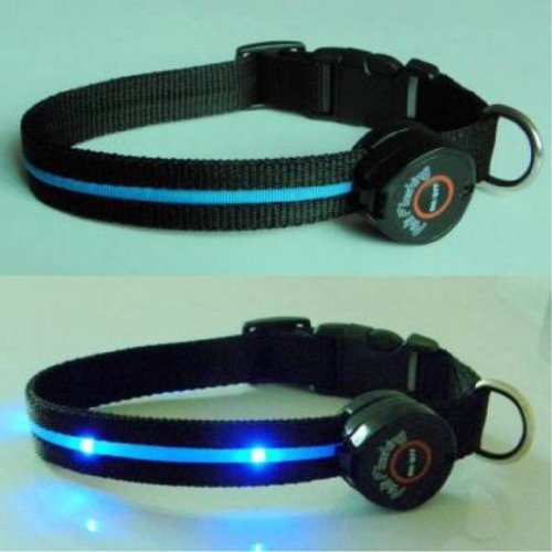Multi-Function Dog Collar with Blue LED Lights – Large