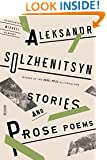Stories and Prose Poems (FSG Classics)