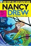 Doggone Town (Nancy Drew: Girl Detective, No. 13) (v. 13)