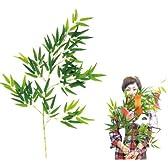【七夕】 笹・中 (1本)  / お楽しみグッズ(紙風船)付きセット [オフィス用品]
