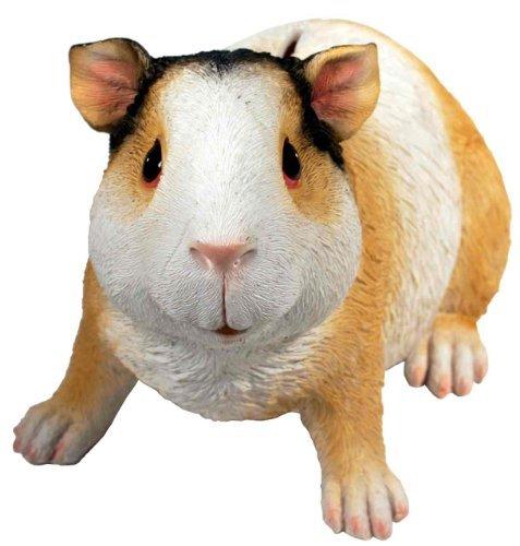Guinea Pig Money Bank - 1