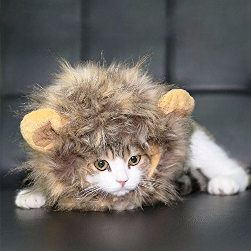 CatYou Halloween Photo Parties Pet Costume Lion Mane Wig Hat for Cats Dogs Pet Dress up and Costume