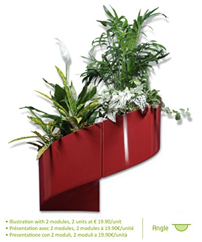 Modul 39 green vaso per piante a muro design interno for Plante contemporaine