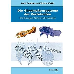 Die Gliedmaßensysteme der Vertebraten: Entwicklungen, Formen und Funktionen