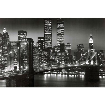 new york skyline at night black and. cheap New York City Brooklyn