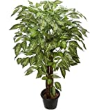 Kusal Artificial zebra tree Wild Plant with Pot