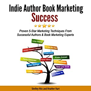 Indie Author Book Marketing Success Audiobook