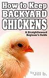 How to Keep Backyard Chickens - A Straightforward Beginners Guide