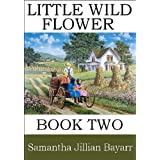 Little Wild Flower, Book 2 (Little Wild Flower, an Amish Romance) ~ Samantha Jillian  Bayarr