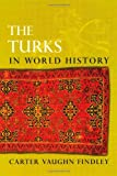 img - for The Turks in World History book / textbook / text book