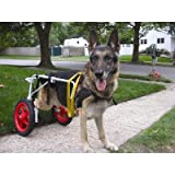 "Dog Wheelchair Size: X-Small (15"" H x 8"" W x 4"" D)"
