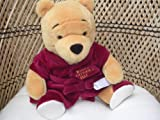 Winnie the Pooh Plush Toy ; Happy Father's Day 11