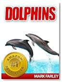 Dolphins - Facts About These Fascinating Marine Life Animals with Videos