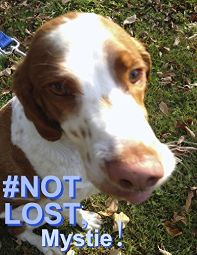 #NOT LOST, Mystie!: True Story of Bruno, Adventurous Country Dog. Children's Bedtime Story with Pictures of Animals. 16 Q & A at the end. 3-8yrs. Ebook (A Picture Of A Q compare prices)