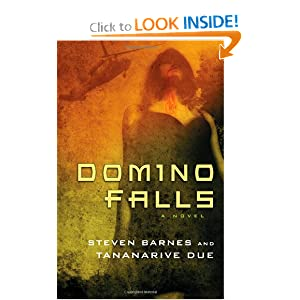 Domino Falls: A Novel by Steven Barnes and Tananarive Due