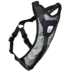 Canine Friendly Dog Safety Harness, Medium, Steel Grey