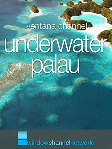 Window Channel's Underwater Palau
