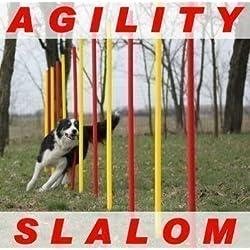 AGILITY-ÜBUNGS-SLALOM-SET ROT/GELB FLEXIBLE,RUNDE STANGEN