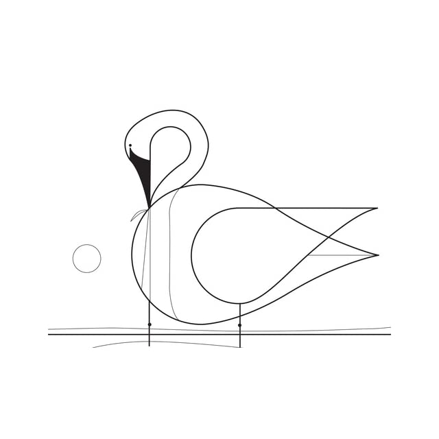 Charley Harper Coloring Book of Birds on PopScreen