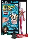 Smart Lab Squishy Human Body with Free Storage Bag