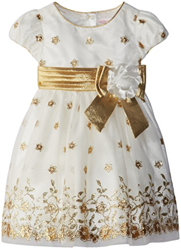 Youngland Little Girls' Embroidered Occasion Dress, Gold/Ivory, 3T
