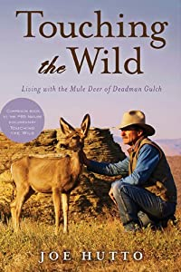 Touching the Wild: Living with the Mule Deer of Deadman Gulch by Joe Hutto