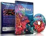 R�cifs coralliens - Aquarium 110 Minu...