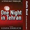 One Night in Tehran: A Titus Ray Thriller (       UNABRIDGED) by Luana Ehrlich Narrated by Chris Abell