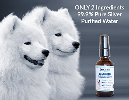 Dog Oral Disinfectant Natural