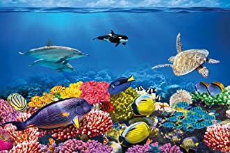 Undersea Coral Reef Photo Wall Paper - Aquarium Fish Sea Mural - Xxl Undersea Underwater World Wall Decoration