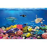 Undersea coral reef photo wall paper - aquarium fish sea mural - XXL undersea underwater world wall decoration - GREAT ART 82.7 Inch x 55 Inch