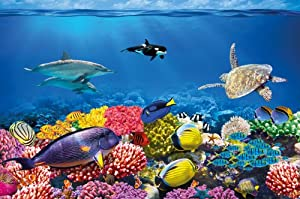 Amazon.com - Undersea coral reef photo wall paper - aquarium fish sea